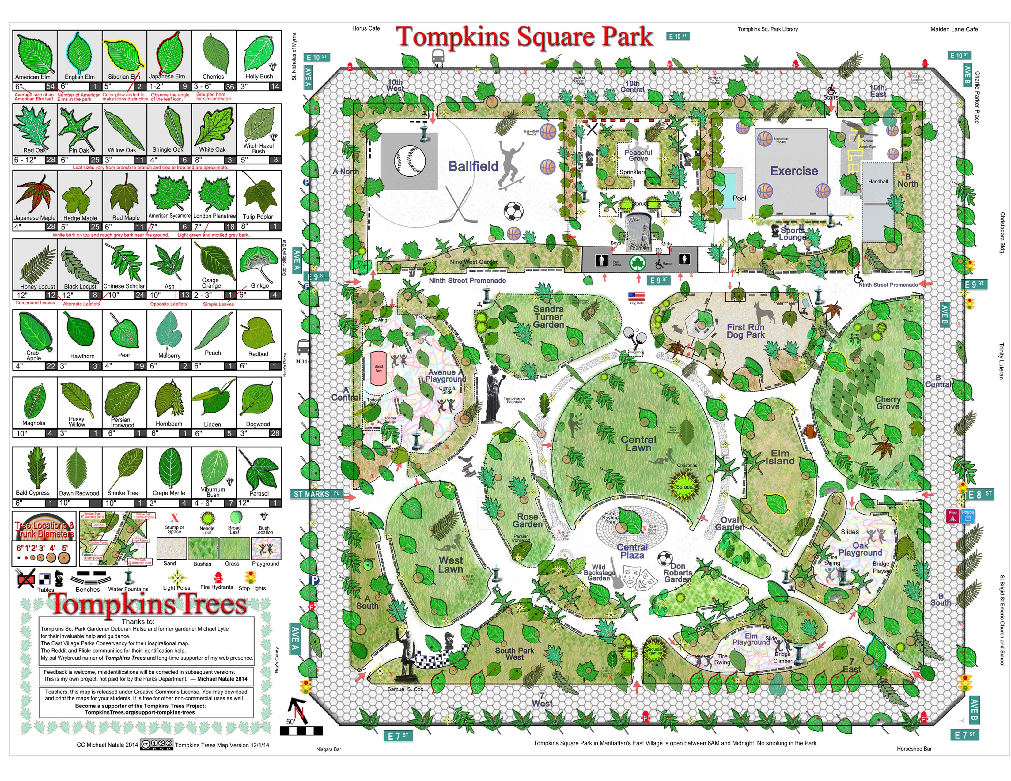 victor turner forest of symbols pdf